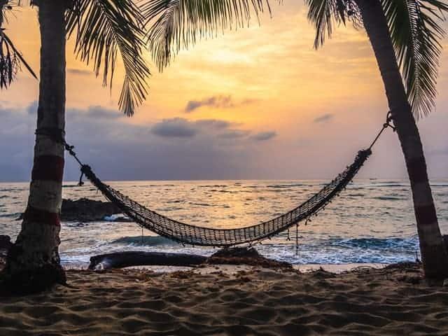 revenus passifs relax